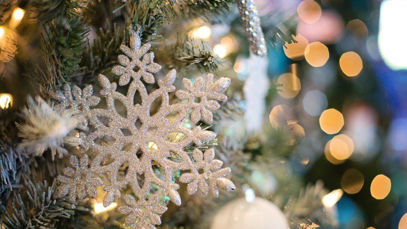 Comment organiser un arbre de Noël ?